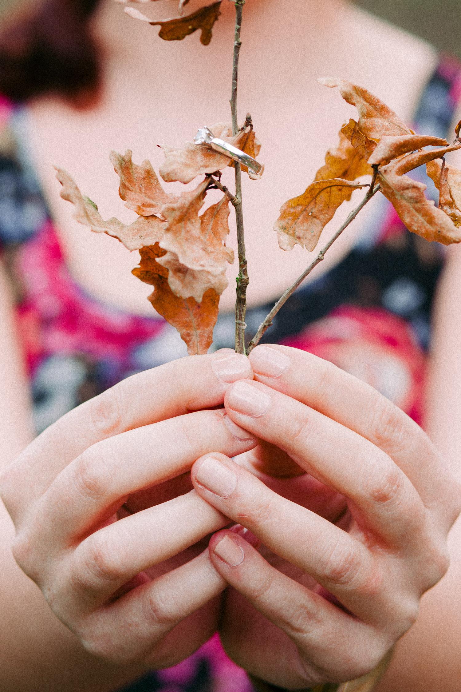 Frau hält Zweig mit dem Verlobungsring in den Händen